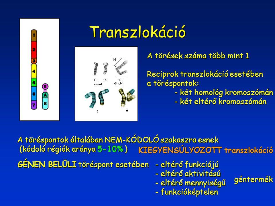 Transzlokáció A törések száma több mint 1
