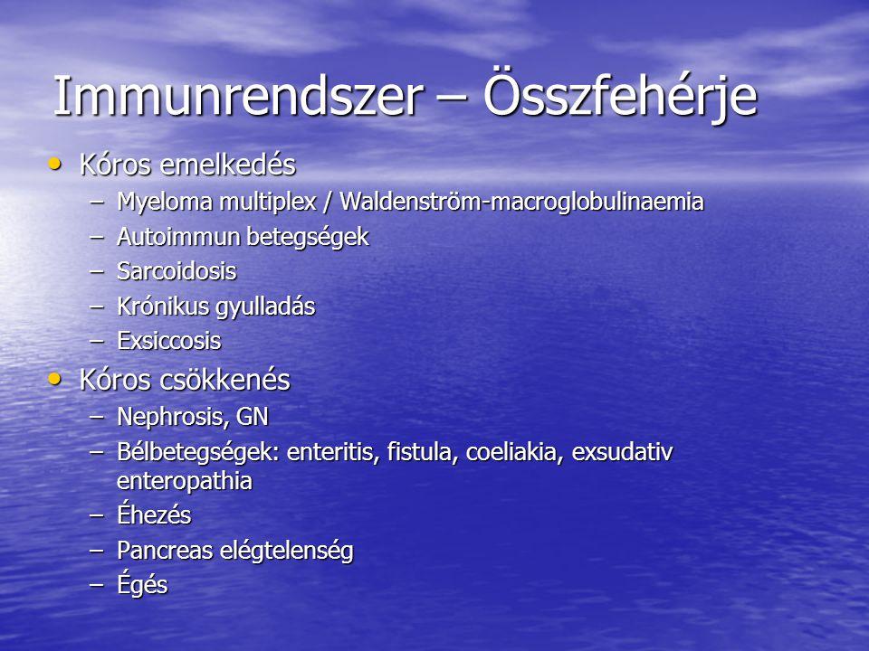 Immunrendszer – Összfehérje