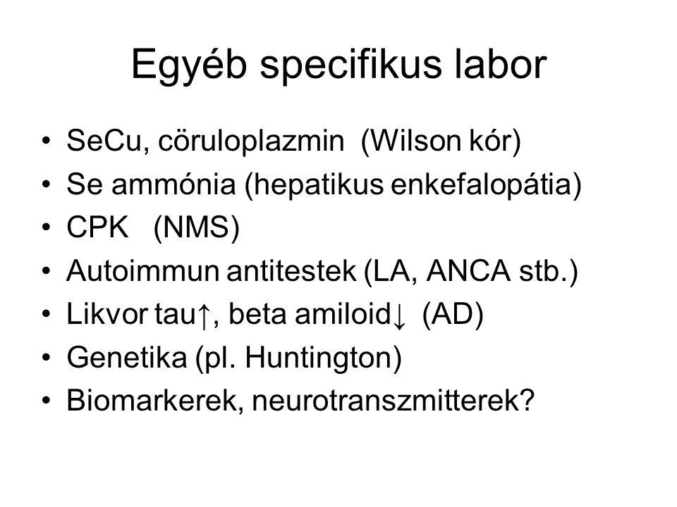 Egyéb specifikus labor