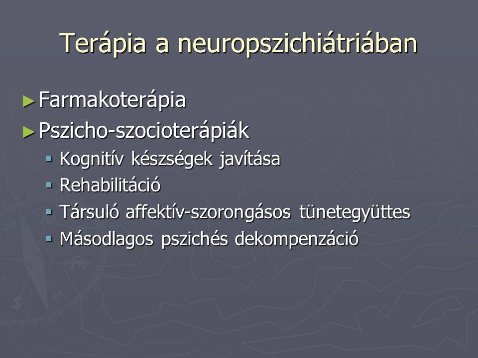 Terápia a neuropszichiátriában