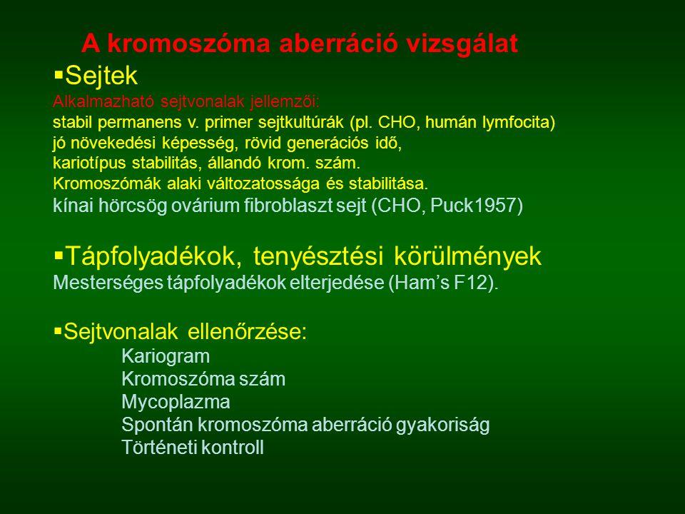 A kromoszóma aberráció vizsgálat Sejtek
