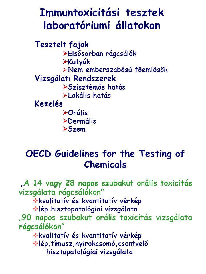 Immuntoxicitási tesztek laboratóriumi állatokon