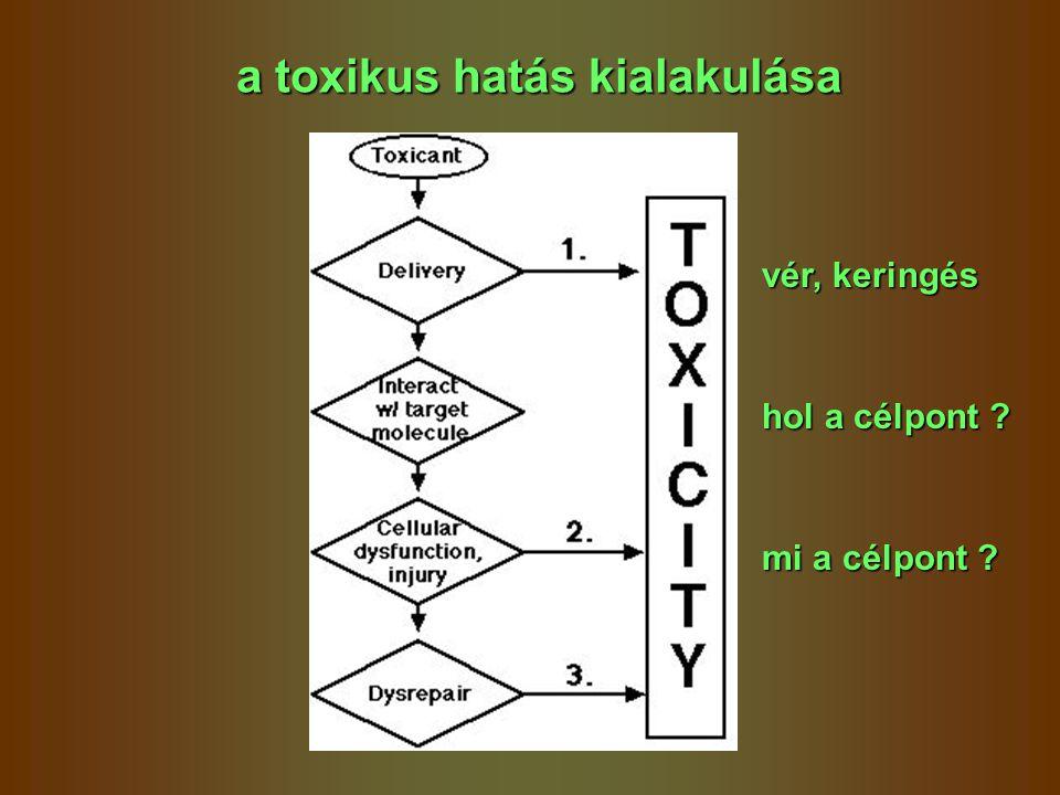 a toxikus hatás kialakulása