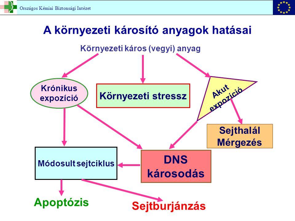 Környezeti káros (vegyi) anyag