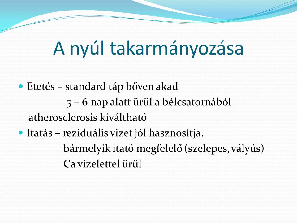 A nyúl takarmányozása Etetés – standard táp bőven akad