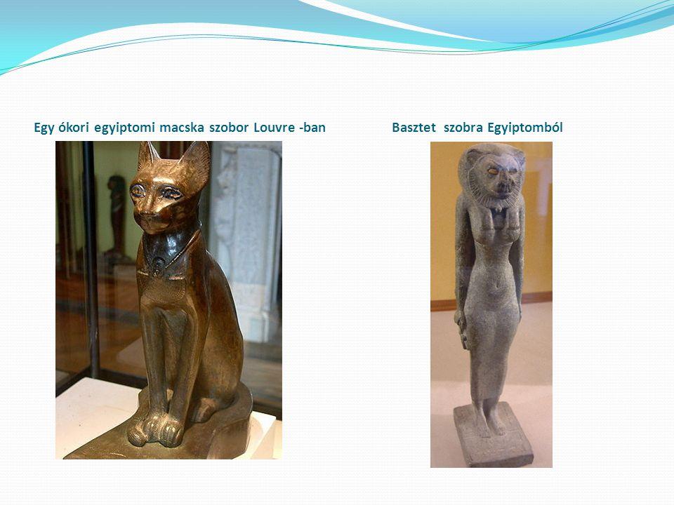 Egy ókori egyiptomi macska szobor Louvre -ban Basztet szobra Egyiptomból