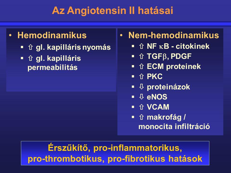 Az Angiotensin II hatásai