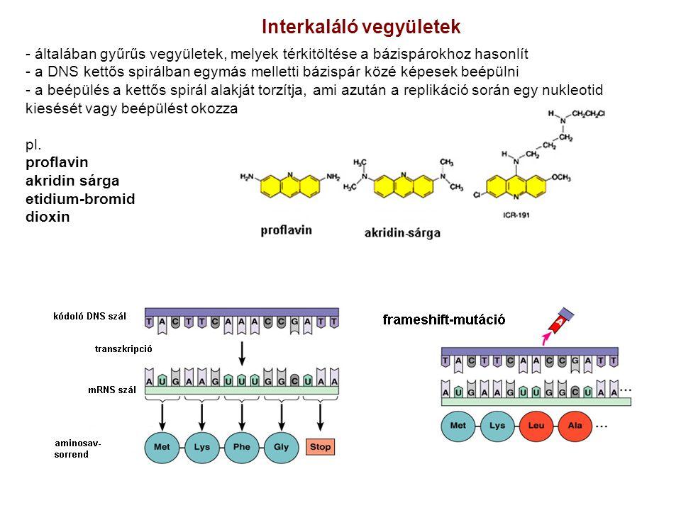 Interkaláló vegyületek