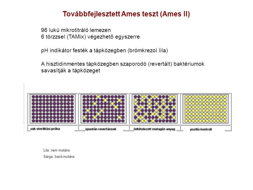 Továbbfejlesztett Ames teszt (Ames II)
