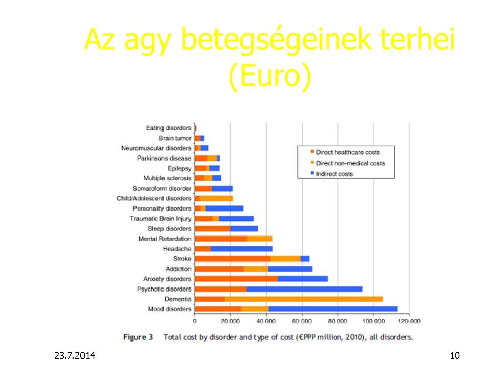 Az agy betegségeinek terhei (Euro)