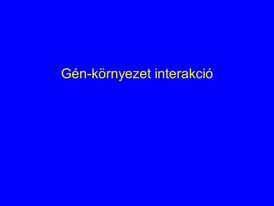 Gén-környezet interakció