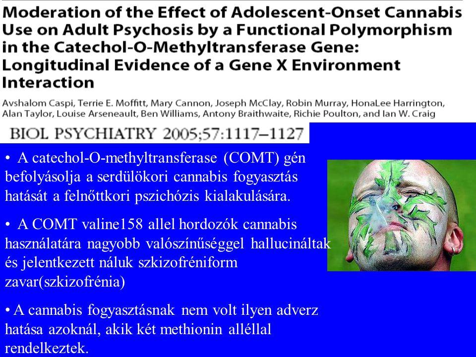 A catechol-O-methyltransferase (COMT) gén befolyásolja a serdülökori cannabis fogyasztás hatását a felnőttkori pszichózis kialakulására.