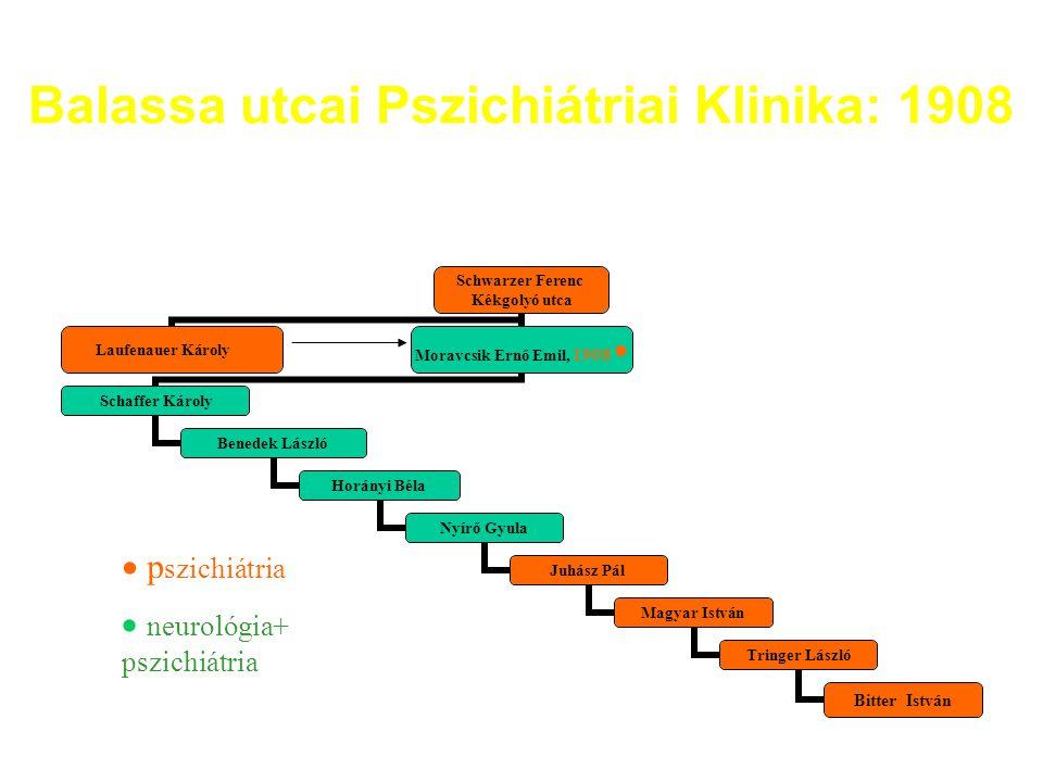 Balassa utcai Pszichiátriai Klinika: 1908