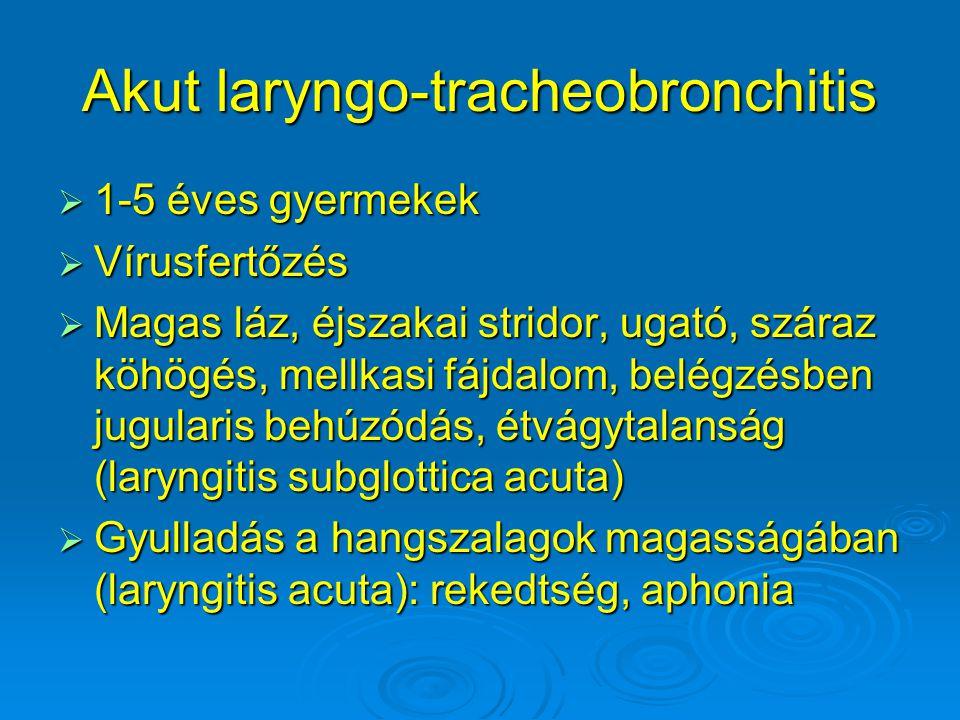 Akut laryngo-tracheobronchitis