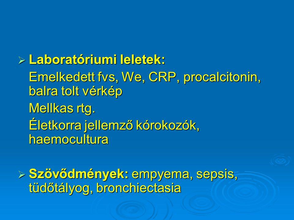 Laboratóriumi leletek:
