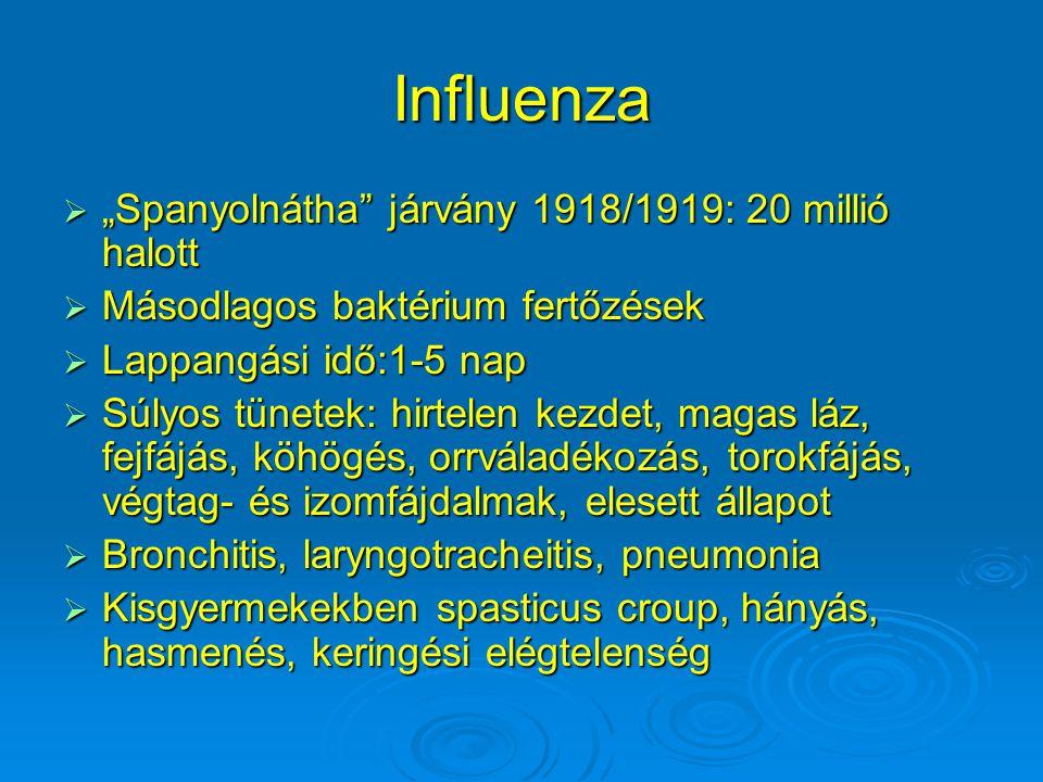 """Influenza """"Spanyolnátha járvány 1918/1919: 20 millió halott"""