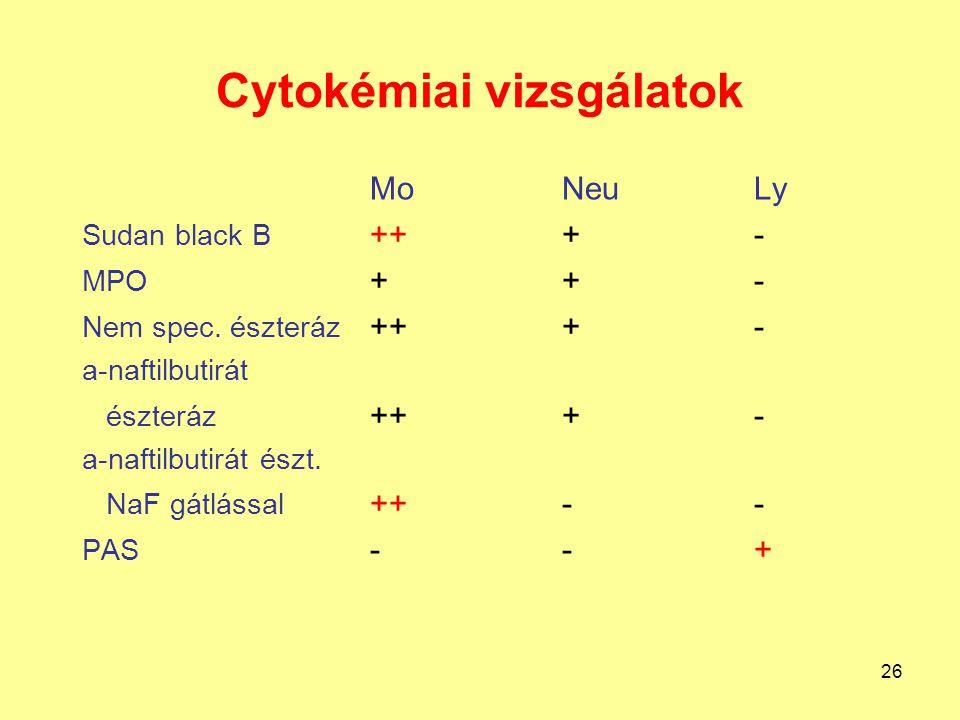 Cytokémiai vizsgálatok