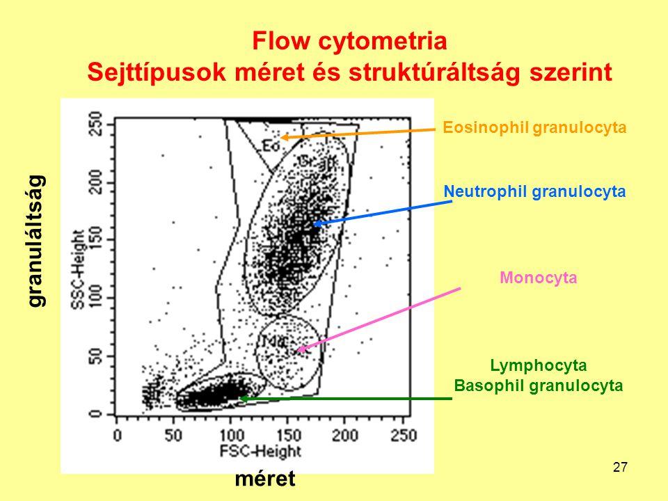 Flow cytometria Sejttípusok méret és struktúráltság szerint