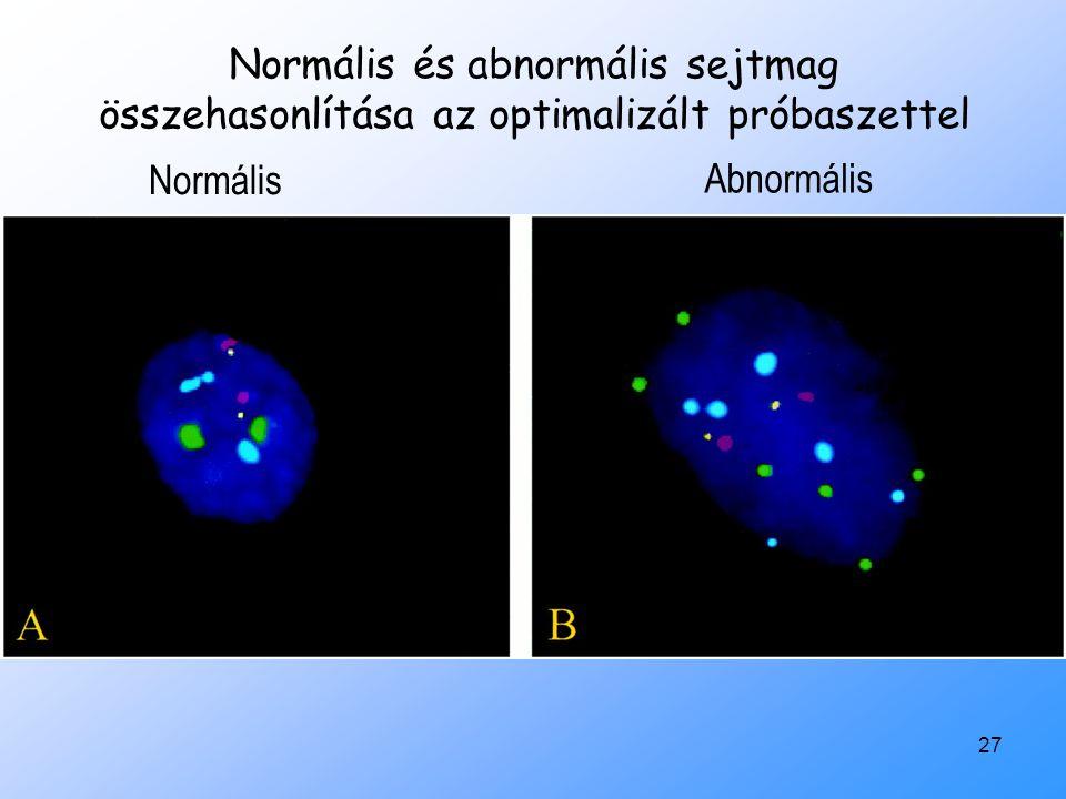 Normális és abnormális sejtmag összehasonlítása az optimalizált próbaszettel