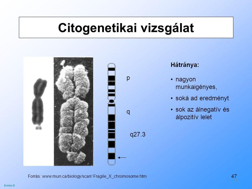 Citogenetikai vizsgálat