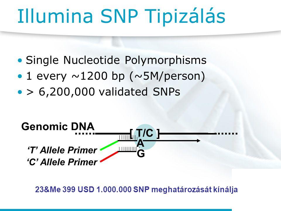 Illumina SNP Tipizálás