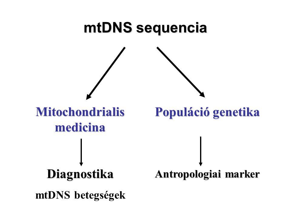 Mitochondrialis medicina