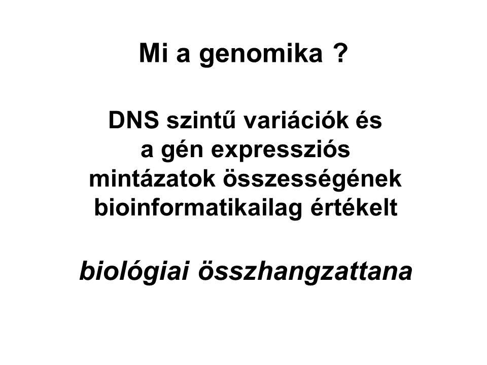 Mi a genomika biológiai összhangzattana