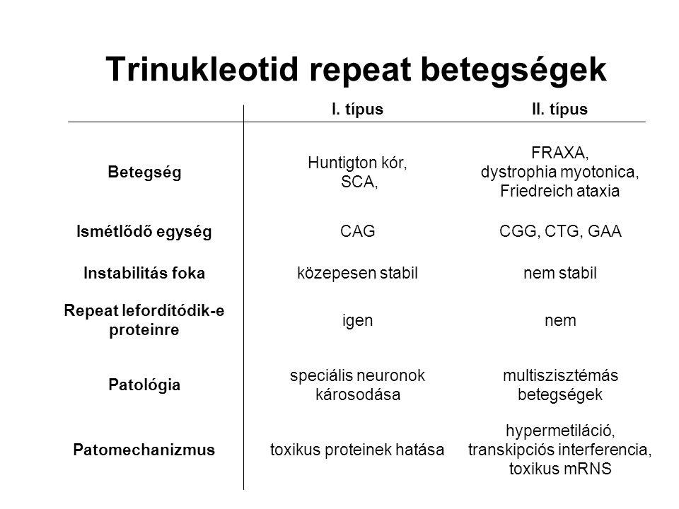 Trinukleotid repeat betegségek