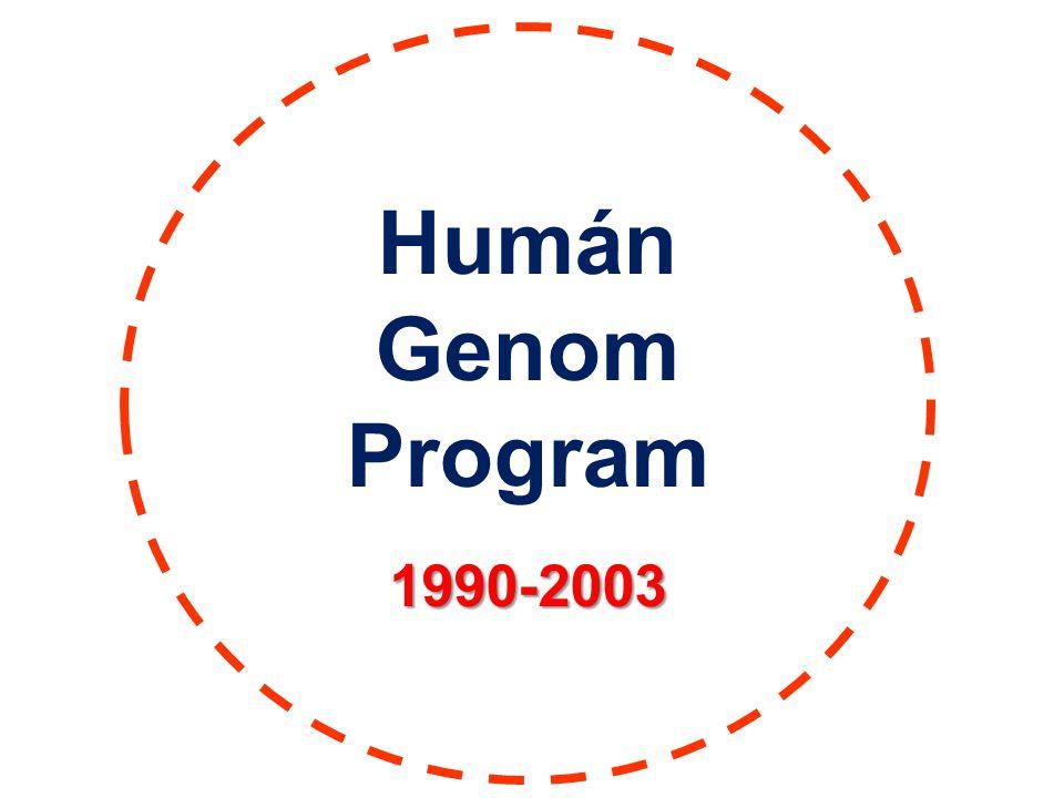 Humán Genom Program 1990-2003