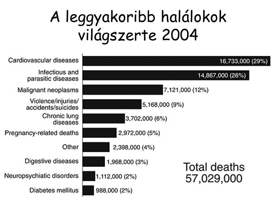 A leggyakoribb halálokok világszerte 2004