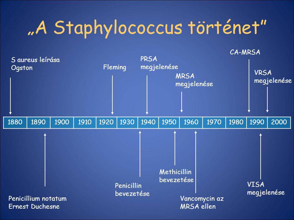 """A Staphylococcus történet"