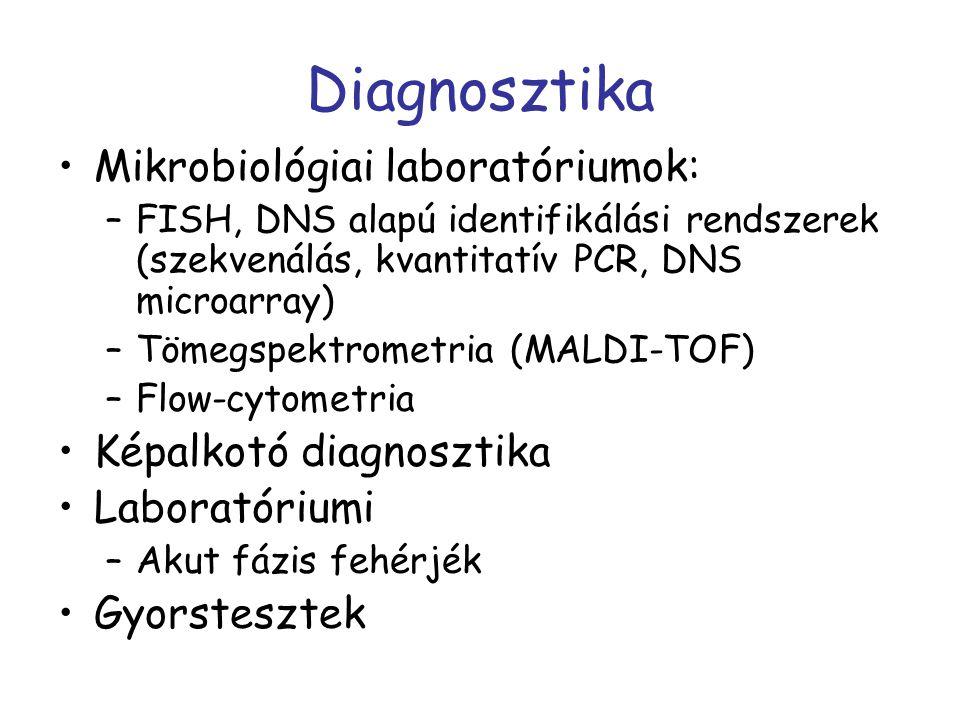 Diagnosztika Mikrobiológiai laboratóriumok: Képalkotó diagnosztika
