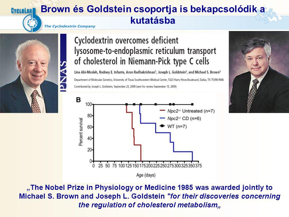 Brown és Goldstein csoportja is bekapcsolódik a kutatásba