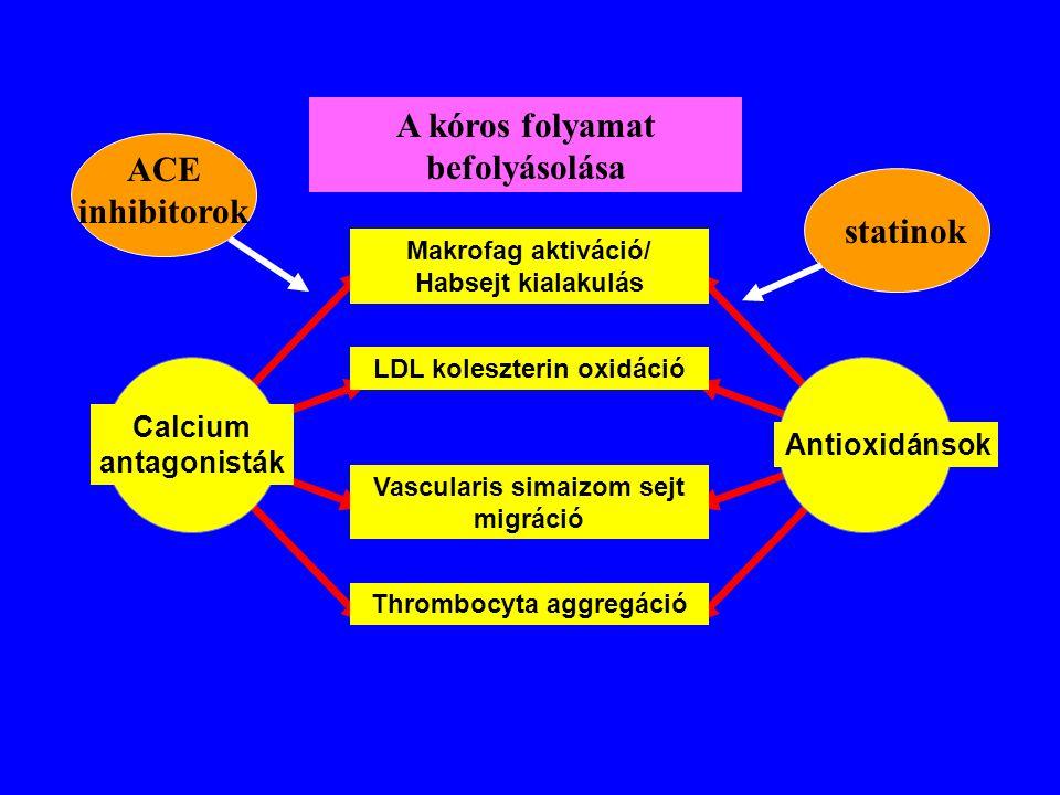 A kóros folyamat befolyásolása ACE inhibitorok statinok
