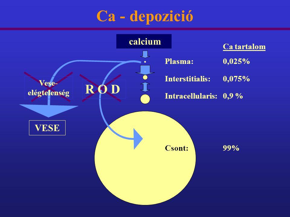 Ca - depozició R O D calcium Ca tartalom . VESE Plasma: 0,025%