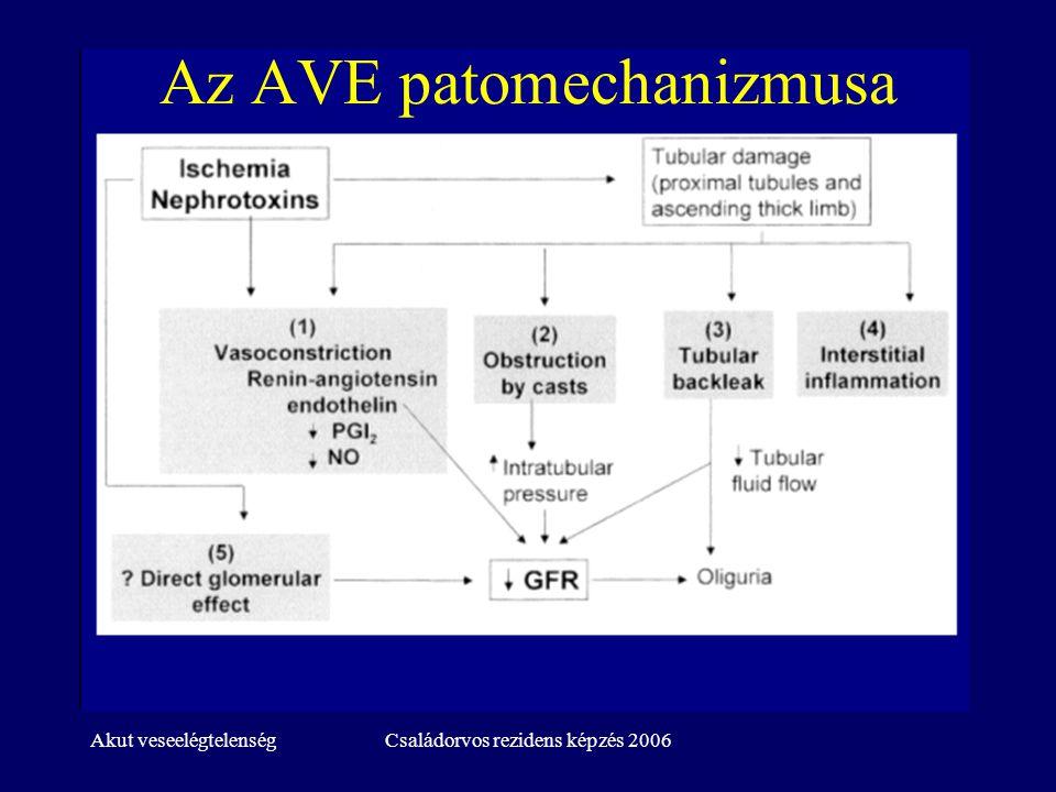 Az AVE patomechanizmusa