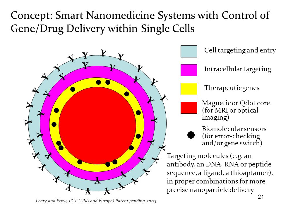 Concept: Smart Nanomedicine Systems with Control of Gene/Drug Delivery within Single Cells