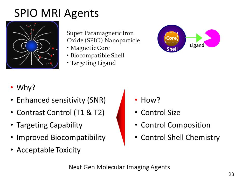 SPIO MRI Agents Why Enhanced sensitivity (SNR)