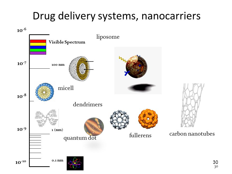 Drug delivery systems, nanocarriers