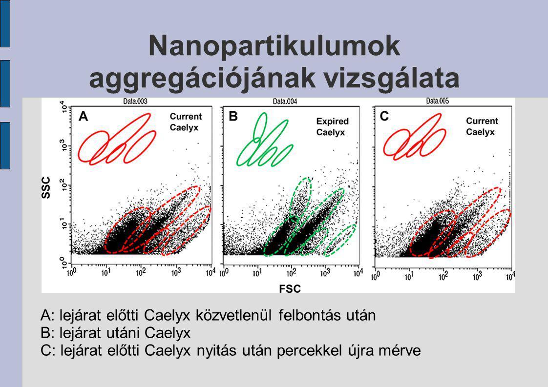 Nanopartikulumok aggregációjának vizsgálata
