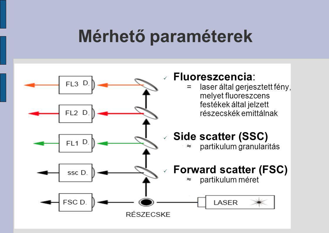 Mérhető paraméterek Fluoreszcencia: Side scatter (SSC)