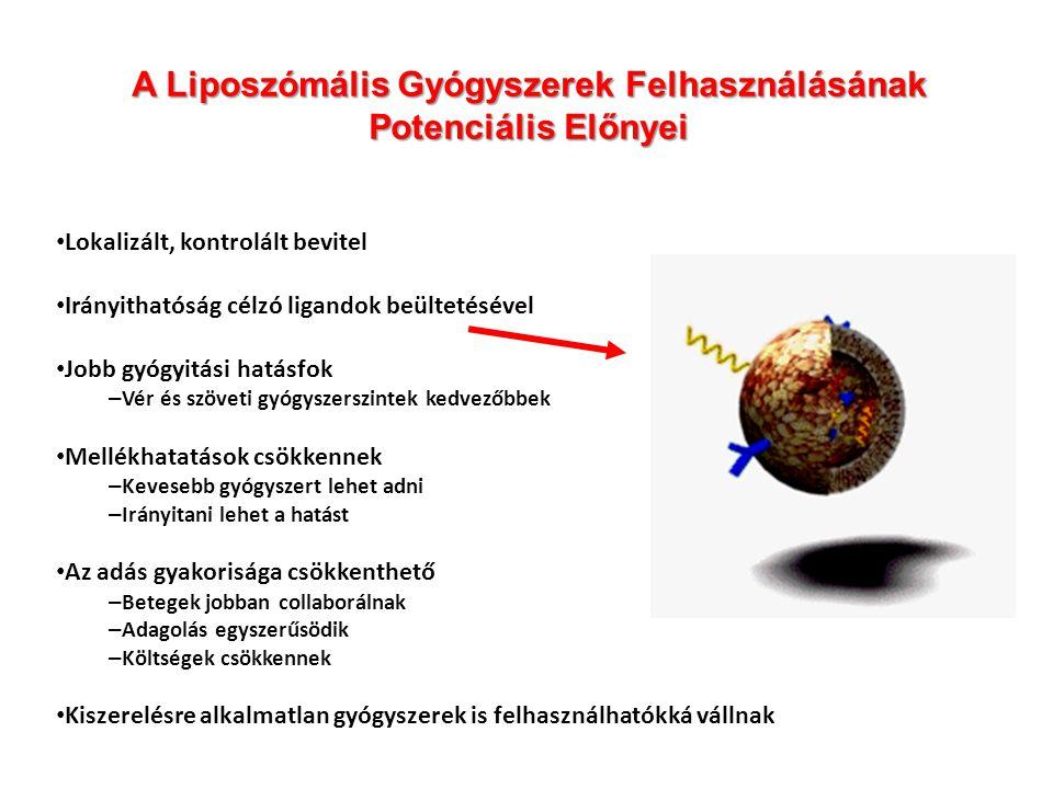 A Liposzómális Gyógyszerek Felhasználásának Potenciális Előnyei