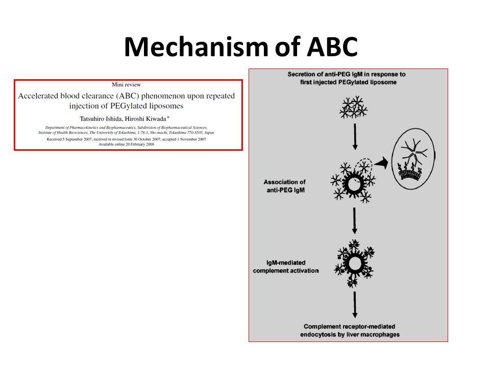 Mechanism of ABC