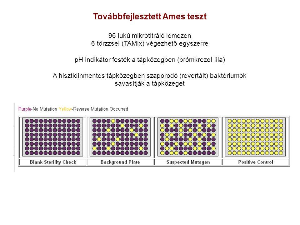 Továbbfejlesztett Ames teszt