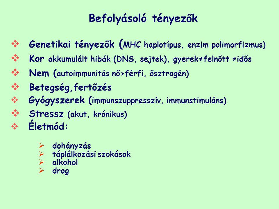 Genetikai tényezők (MHC haplotípus, enzim polimorfizmus)