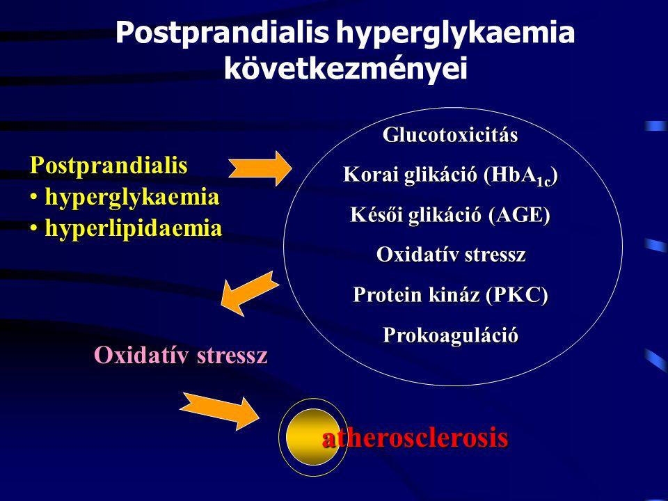 Postprandialis hyperglykaemia következményei