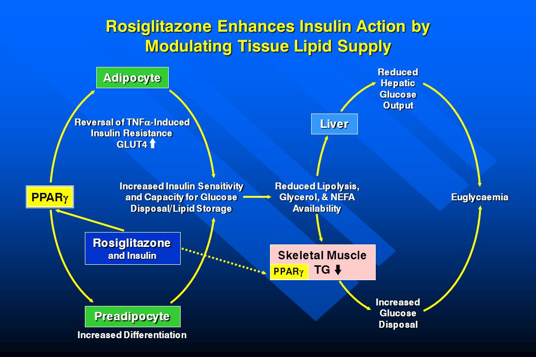 Rosiglitazone Enhances Insulin Action by