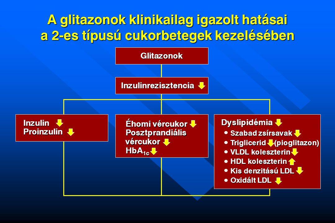 A glitazonok klinikailag igazolt hatásai a 2-es típusú cukorbetegek kezelésében