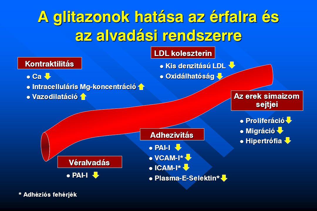 A glitazonok hatása az érfalra és az alvadási rendszerre