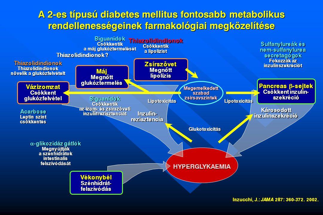 A 2-es típusú diabetes mellitus fontosabb metabolikus rendellenességeinek farmakológiai megközelítése